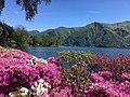 Lake Lugano26.jpg