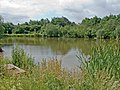 Lake in Radbrook Green Park - geograph.org.uk - 864891.jpg