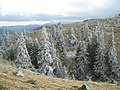 Landscape - panoramio - Cioboata Andrei.jpg