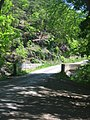 Little Cacapon River Neals Run WV 2005 05 26 10.jpg