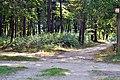 Liubeshiv Volynska-settlement-II-2.jpg