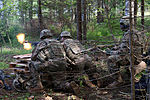 Live fire exercise in Estonia hones soldiering skills 150711-A-VD071-001.jpg