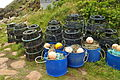 Lobster pots at Penberth (7224).jpg