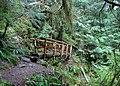 Log Footbridge on the Boulder River Wilderness, Mt Baker Snoqualmie National Forest (24853488324).jpg