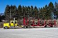 Logging Truck PA D.D.Teoli Jr.jpg