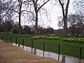 London , St James' Park - geograph.org.uk - 1139742.jpg