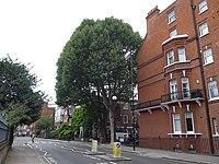 Looking across Royal Hospital Road towards Tite Street, London-geograph-4108296.jpg