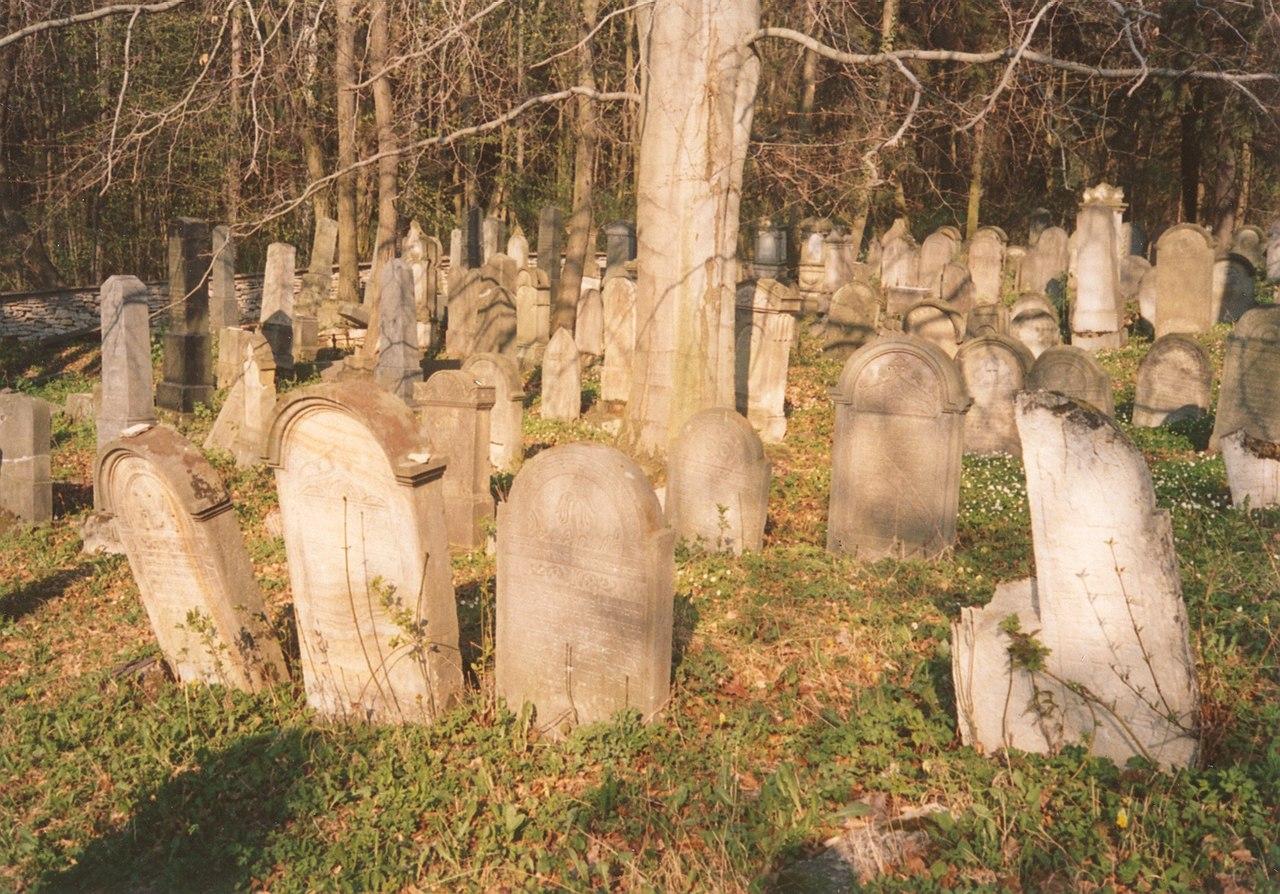 Luže-Jewish cemetery.jpg