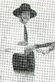 Ludwik Sempoliński (Messalinetta)new.png
