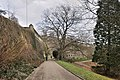 Luxembourg Petrusse fortress and remarkable beech 01.jpg