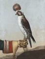 Målning, Isländsk jaktfalk, 1759 - Livrustkammaren - 89009.tif