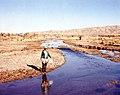 Maggie Creek 1980.jpg
