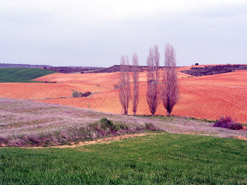 File:Malaguilla Countryside view2.jpg