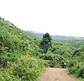 Malavli hills lonavla.jpg