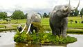 Manada de Gonfoterios (Parque chuyaca - Osorno).jpg