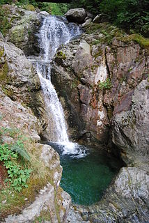Davis Lake Provincial Park