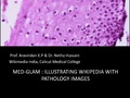Med GLAM Illustrating Wikipedia with pathology images.pdf