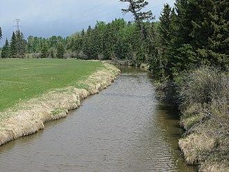Medicine River (Alberta) - The Medicine River outside Rimbey, Alberta