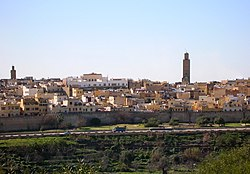 Skyline of Meknès