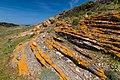 Menorca 2014-051 (16070105557).jpg