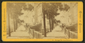 Michigan Avenue, from Jackson Street, by Carbutt, John, 1832-1905.png