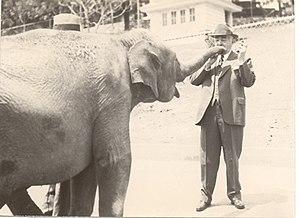 ZooAmerica - Milton Hershey with an elephant at ZooAmerica