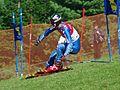 Mirko Hüppi Grass Skiing World Championships 2009 SC Super-G.jpg