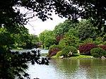 Missouri Botanical Garden - Seiwa-en.JPG