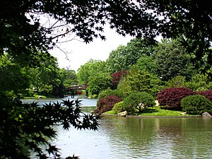 Missouri Botanical Garden - A view of Seiwa-en, the largest Japanese garden in North America