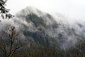 Mist on the Mountain (4551400548).jpg