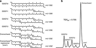 TEX86 - Molecular structures and HPLC detection of GDGTs