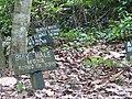 Monkey Cemetery, Ghana - panoramio.jpg