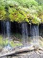 Mosses Waterfall.jpg