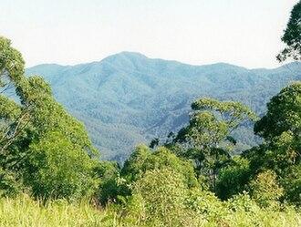 Glencoe Creek, New South Wales - Countryside round Glencoe Creek