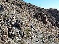 Mount Wilson AZ ascent 4.jpg