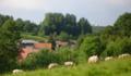 Mouriez vue du chemin rural de Douai.png