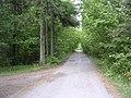 Näpi - panoramio (5).jpg