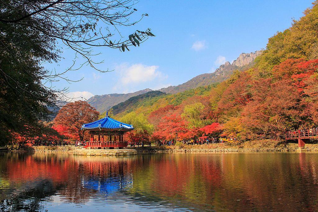 Du lịch tự túc Hàn Quốc | Naejangsan