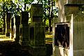 Nagrobki na cmentarzu wojennym Nr 91, I wojny światowej w Gorlicach..jpg