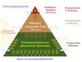 Nahrungspyramide Schema.png