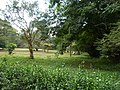 Nairobi Arboretum Park 05.JPG