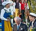 National Day of Sweden 2015 8225-1.jpg