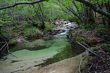National Park of Abruzzo, Latium and Molise 02196.jpg