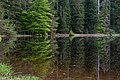 Nationalpark Schwarzwald Wildsee-20.jpg