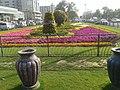 Near Hafeez Centre, Gulberg, Lahore - panoramio (3).jpg