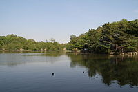 Nerima Syakujii park sampoji pond.jpg
