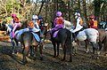 New forest point-to-point.jpg