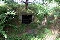 Newborough Warren Q Site DSC 8055 -1.jpg