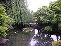 Niagara Falls and Garden Pond.JPG