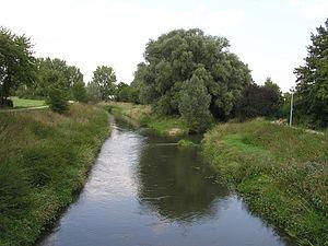 Nidda (river) - Image: Nidda Nidder Muendung